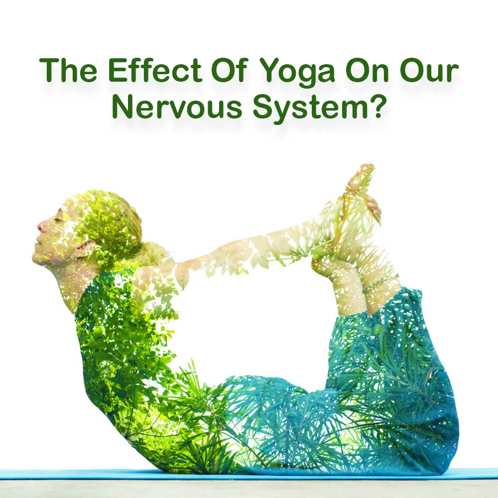 yoga for nervous system